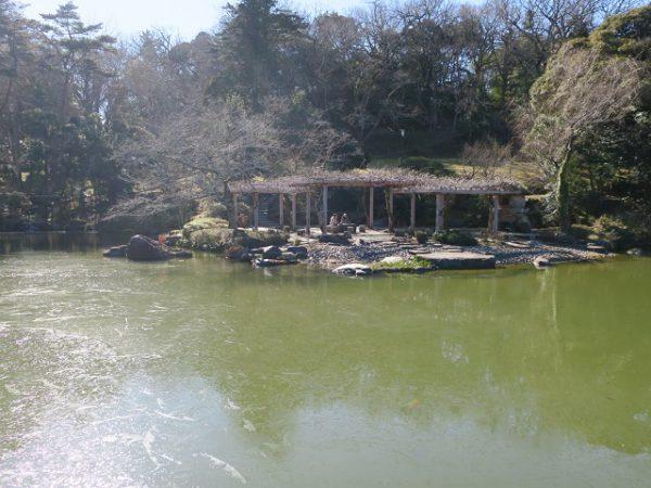 成田山公園 竜智の池にある浮御堂からの景色
