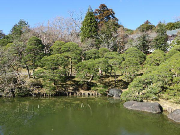 成田山公園 竜智の池近辺の景色