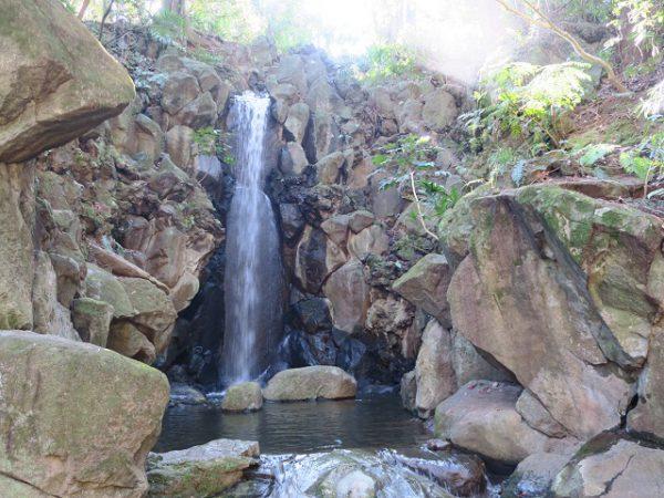 成田山公園 雄飛の滝